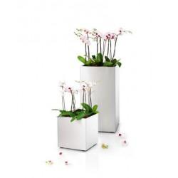 Suport flori green