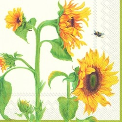Servetele masa HELIANTHUS ANNUUS cream lunch 20 buc