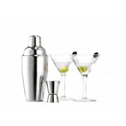 Set 6 pcs martini