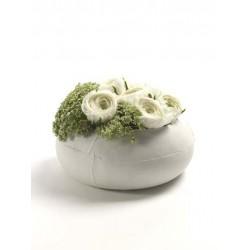 Vaza calebas plate
